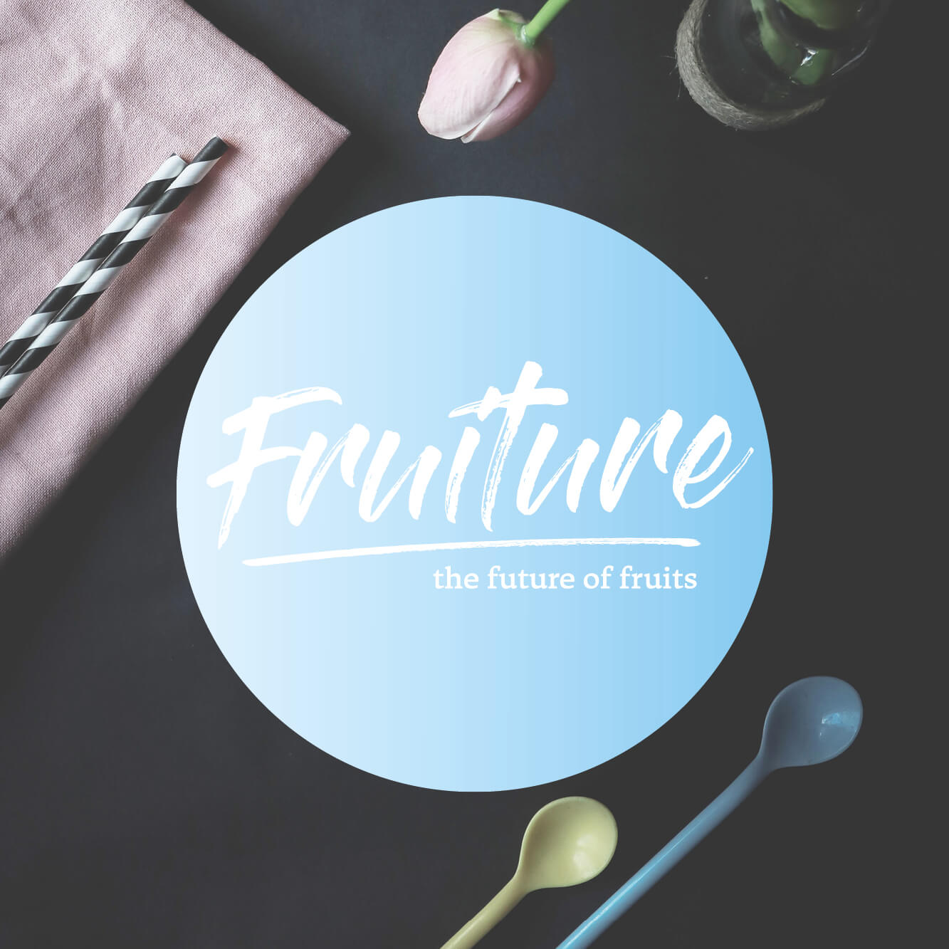 Hermann_Mayer_Projekte_FRUITURE_Logo